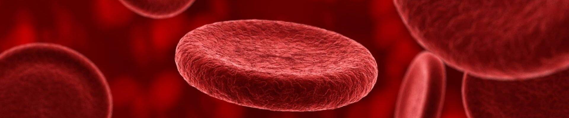 Blood-plasma-and-longevity-Plasma