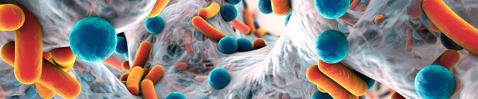 hero-microbiology
