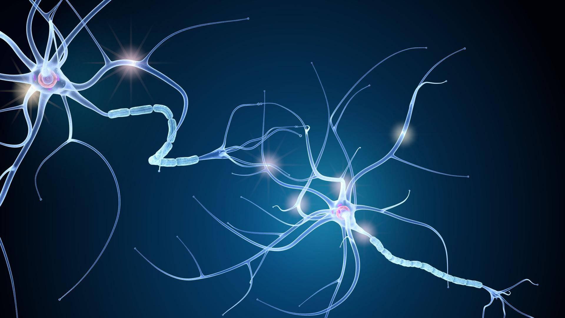 neuron-1920-1080